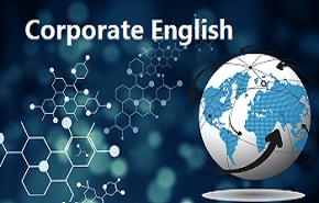 Primus Gradus Corporate INR 8000